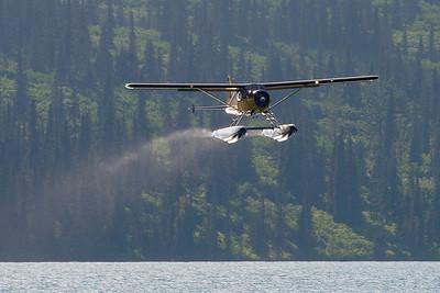 DeHavilland Beaver departing Alaskan Lake.