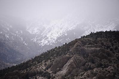 11_05_08 Eastern Sierra 0052
