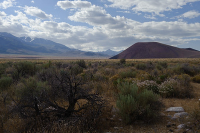 10_06_12 Owens Valley.0564