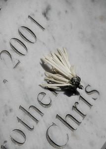 11_05_15 Hollwood Forever Cemetery 0016