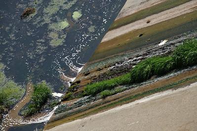 09_09_19 venice and LA river 0270