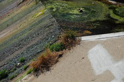 09_09_19 venice and LA river 0277