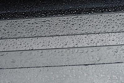 10_01_18 a walk in the rain 0386
