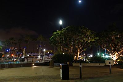 09_04_07Aquarium Night 1489