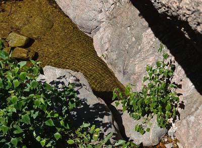 09_08_08 Canyoneering Rubio 0071