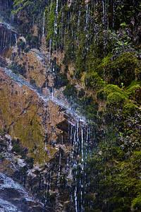 08_04_20 Josephine Creek 0313