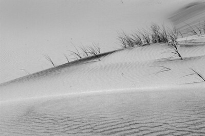 10_05_31 kelso dunes 0196