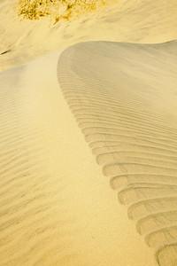 10_05_31 kelso dunes 0123