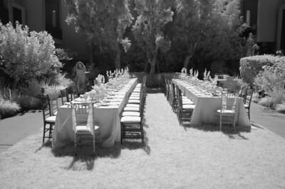 10_08_22Eric and Carols wedding and sundry others0303