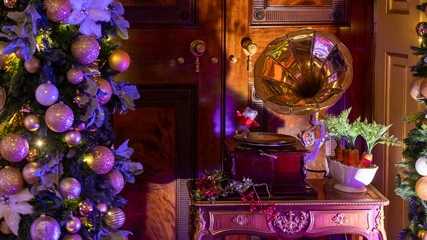 Alice in the Palace, Christmas at Blenheim Palace 2019 - 31/12/2019@15:41