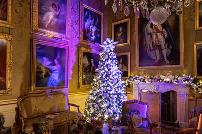 Alice in the Palace, Christmas at Blenheim Palace 2019 - 31/12/2019@15:42