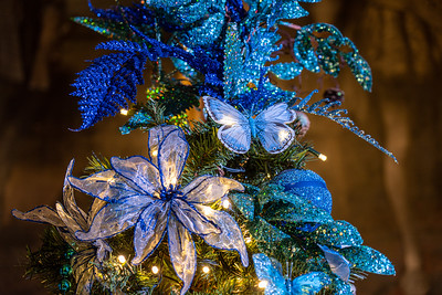 Alice in the Palace, Christmas at Blenheim Palace 2019 - 31/12/2019@15:46