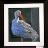 <b>Illumination</b> Honorable Mention <i>- Deborah LaFogg-Docherty</i>