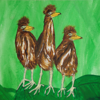 <b>Three of a Kind - Green Heron Chicks</b> Honorable Mention <i>- Kathleen Fosselman</i>