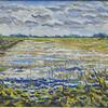 <b>Loxahatchee Wetlands</b> Honorable Mention <i>- Ralph Papa</i>