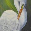 <b>Elegance Of a Great Egret</b> 1st Place <i>- Sheryl Hughes</i>