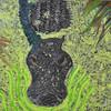 <b>Gator In the Slough</b> <i>- A. Scott Cunningham</i>