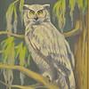 <b>Great Horned Owl</b> <i>- Joanne B. MacLeod</i>
