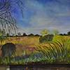 <b>Marsh Trail in Winter</b> Everglades Day, February 14, 2015 <i>- Donna Walsh</i>