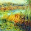 Loxahatchee Wetlands