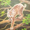 Bobcat Climbing Tree