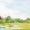 Loxahatchee Marshes