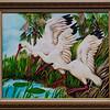 Ibis Alight