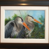 <b>Elegance Of a Great Egret</b> 1st Place <i>- Sheryl Hughes</i>