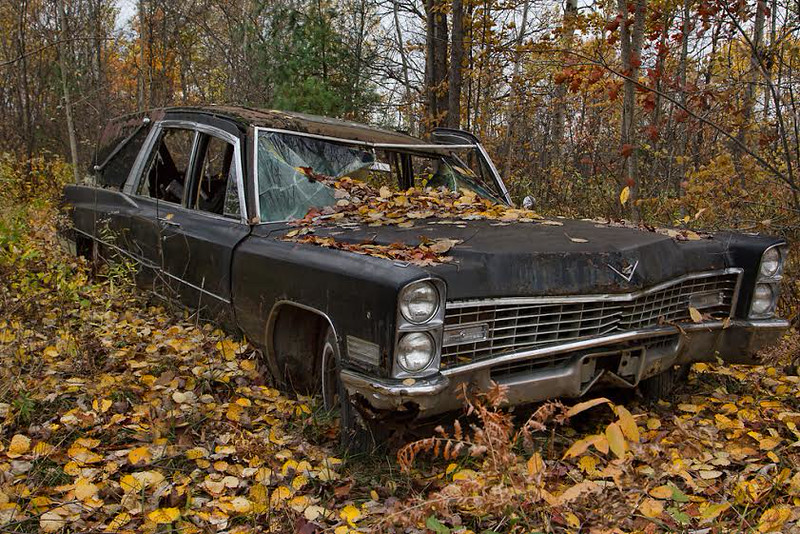 Deadwood<br /> by Spicoli