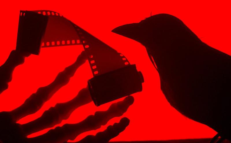 Film is Dead by Sleepingdragon
