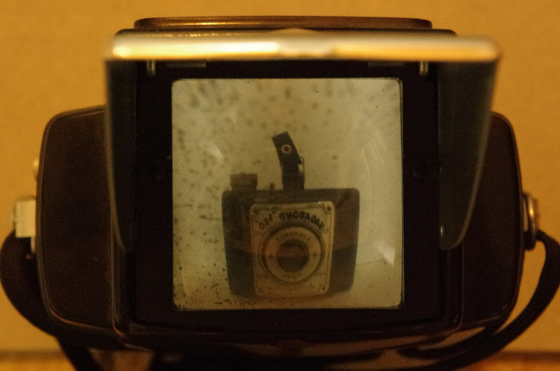 View Through Vintage by Carolyn.E