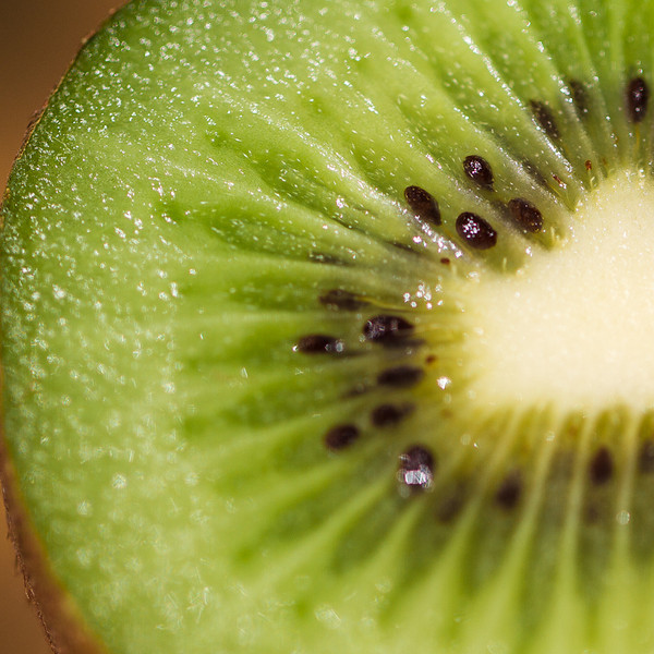 CCC103-08 - Heart of a Kiwi by kfer