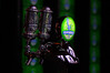 "Steam Whistle on Tap by <a href=""http://www.photographycorner.com/forum/member.php?u=11850"">Kot</a>"