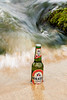 "Holsten by <a href=""http://www.photographycorner.com/forum/member.php?u=15156"">Heema</a>"