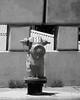 CCC78-08 - Hydrant #55