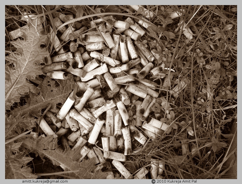 "CCC78-19 - Choking the Earth by a Pile of Cigarette Stubs by <a href=""http://www.photographycorner.com/forum/member.php?u=18106"">fadeaway</a>"