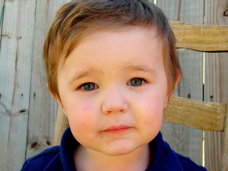 CCC80-02 - Jasper Cash, My 2-Year-Old by AmandaR