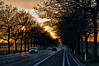 CCC83-07 - Road to Sunset by fotogv