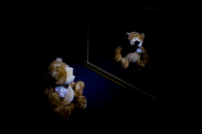 CCC88-13 - Reflective Bear by TenX