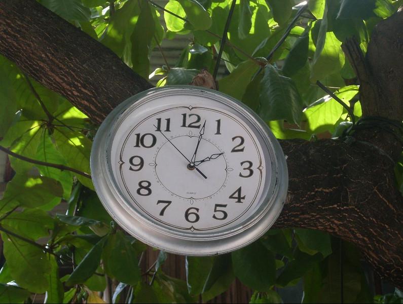 CCC92-16 - Tress Tells Time by ArtQ