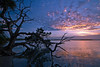 CCC96-03 - Sunset on Mosquito Lagoon by Louisannimage
