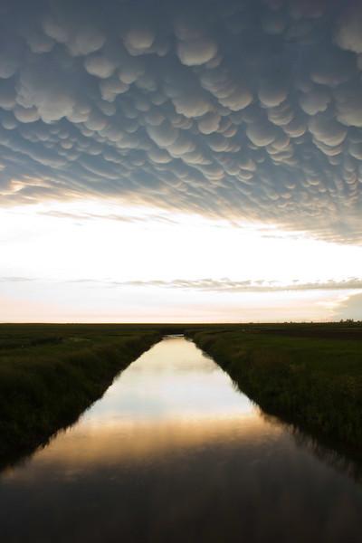 CCC99-32 - Nature's Post Storm Grift