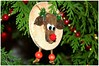 Christmas Moose