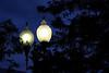 Double Street Lamp by samidget