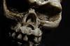 """Bones"" - From the Hit T.V. Series Bones by <a href=""http://www.photographycorner.com/forum/member.php?u=8653"">Scott111184</a>"
