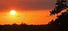 Description - Sunset Panorama <b>Title - Refuge Sunset</b> <i>- Ron Alter</i>