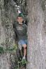 Description - Boy in Cypress Tree <b>Title - Tree Hugger</b> <i>- William Burnett</i>