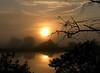 Description - Foggy Sunrise <b>Title - Foggy Sunrise at Loxahatchee</b> Honorable Mention <i>- Meg Puente</i>