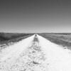 <b>Title - The Road</b> <i>- Jeff Love</i></i></i>