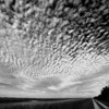 Description - Clouds Over Bike Path On Levee <b>Title - Cloudscape</b> <i>- Jeremy Raines</i>